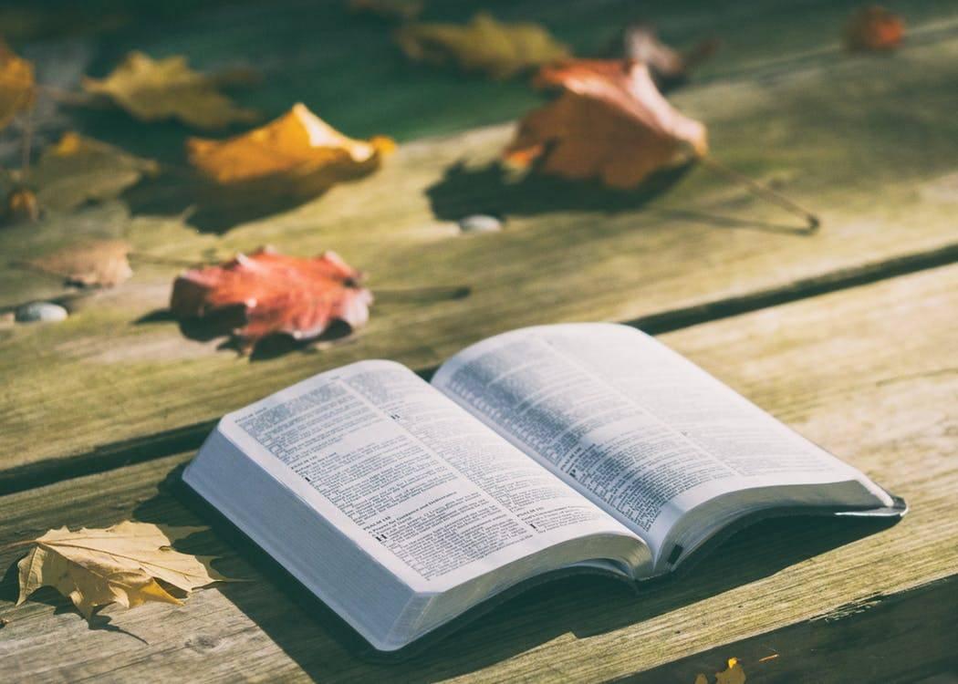 Biblijna koncepcja bogactwa